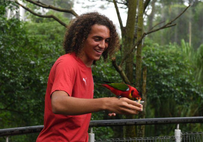 Визит в парк птиц